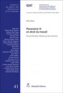 Panorama III en droit du travail